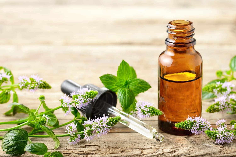 Huile essentielle de menthe poivrée: migraine, digestion...