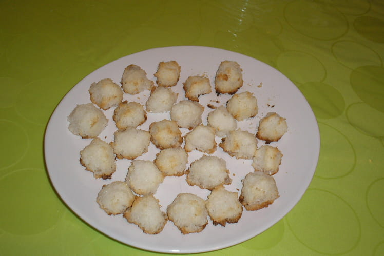 Petits rochers noix de coco