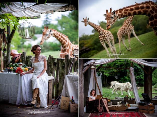 Zoo de Pessac : mariage