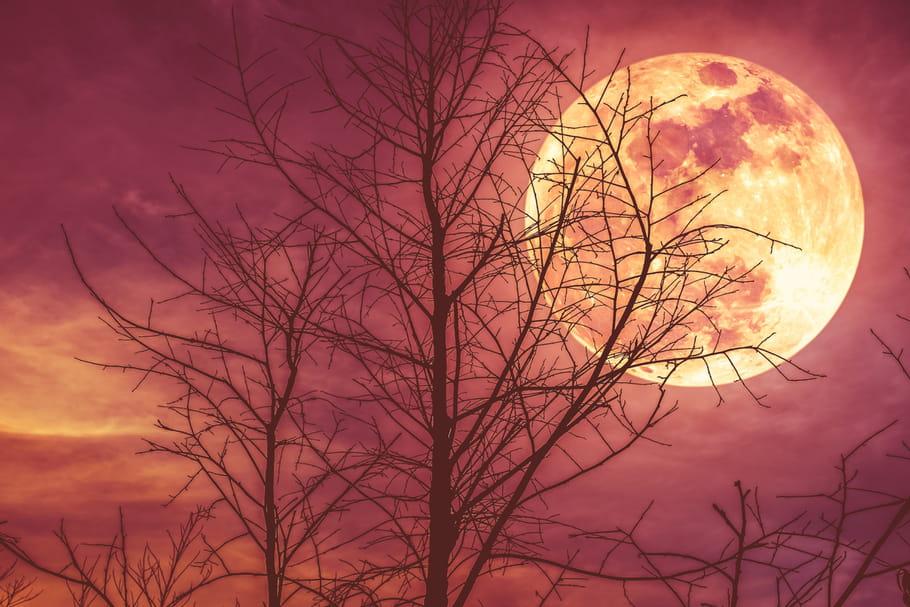 Lune rousse 2020: quand commence-t-elle?