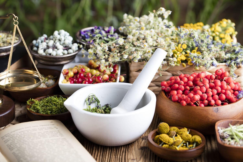 Phytothérapie: comment se soigner avec les plantes