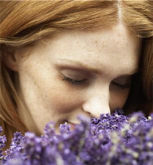 notre nez est capable de se souvenir d'une grande quantité de senteurs.