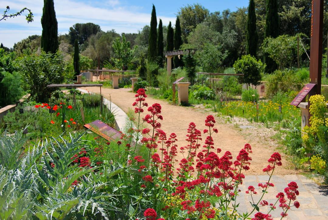 jardin-antique-mediterraneen-balaruc