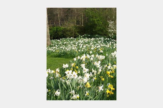 Chambre du printemps