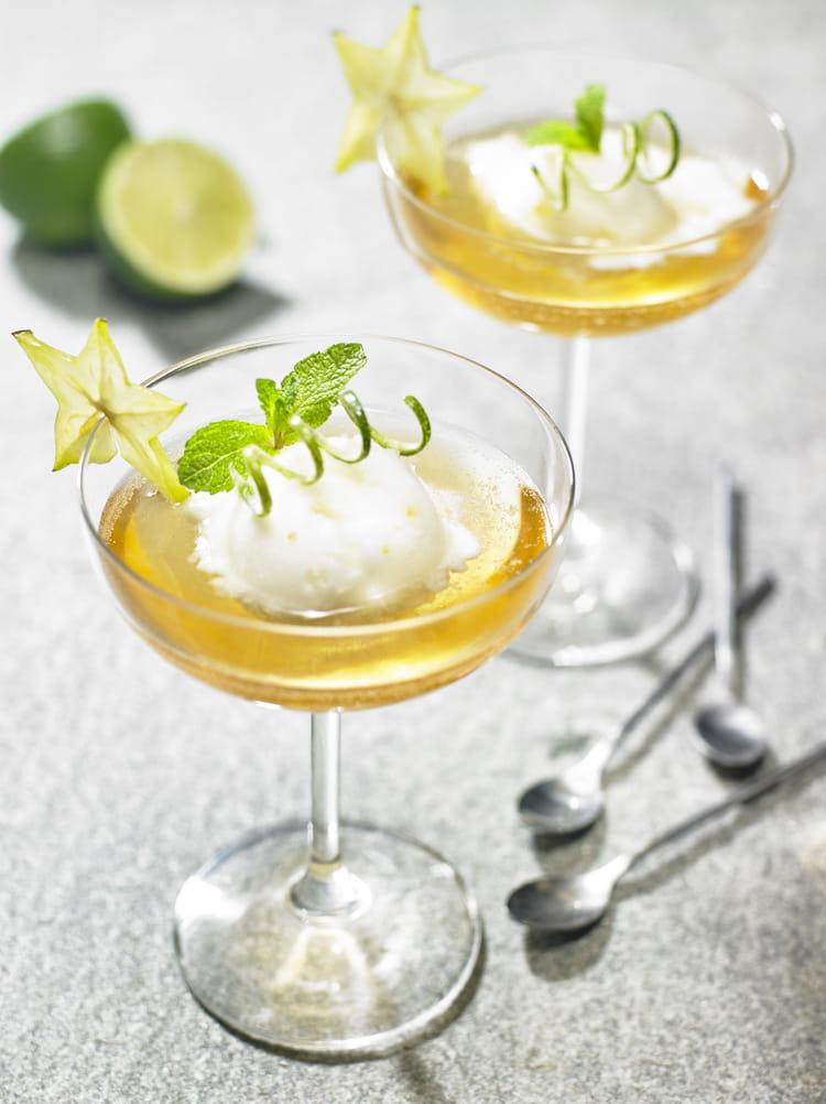 recette de nage de sorbet citron p tillant la recette facile. Black Bedroom Furniture Sets. Home Design Ideas