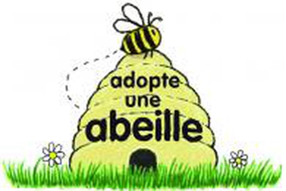 Adoptez une abeille avec Innocent