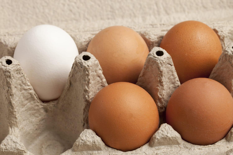 Quand Système U fait campagne sur TikTok pour parler des œufs