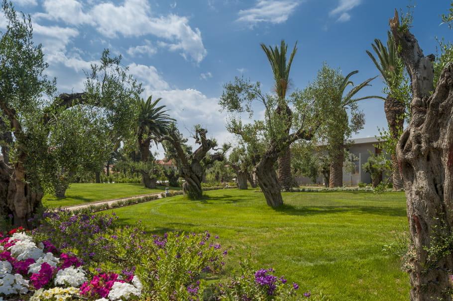 Les jardins verdoyants de l'hôtel Ikos Olivia