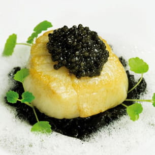 saint-jacques poêlée, risotto à l'encre de seiche, émulsion au parmesan, caviar