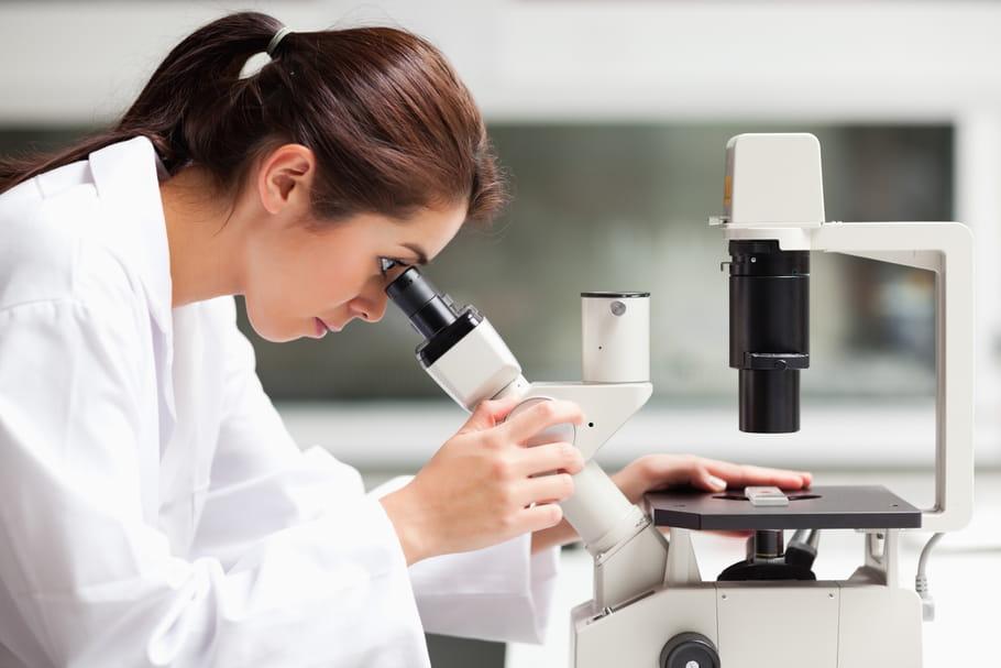 Papillomavirus et prévention du cancer du col de l'utérus