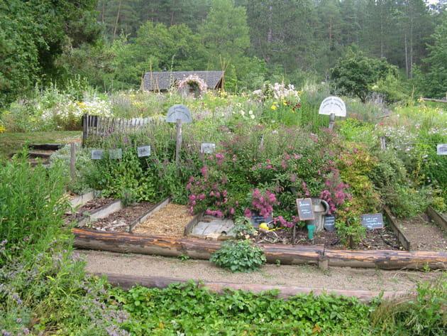 Un jardin potager pédagogique
