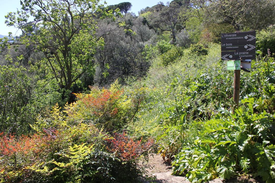 jardin-mediterraneen-banyuls-biodiversarim