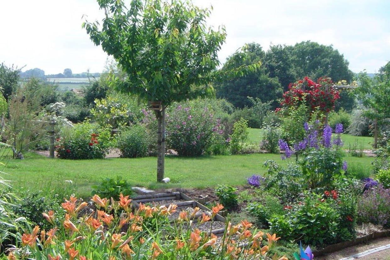 Cerisier au pied fleuri for Deco jardin fleuri