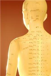 l'acupuncture travaille sur les méridiens de l'organisme.