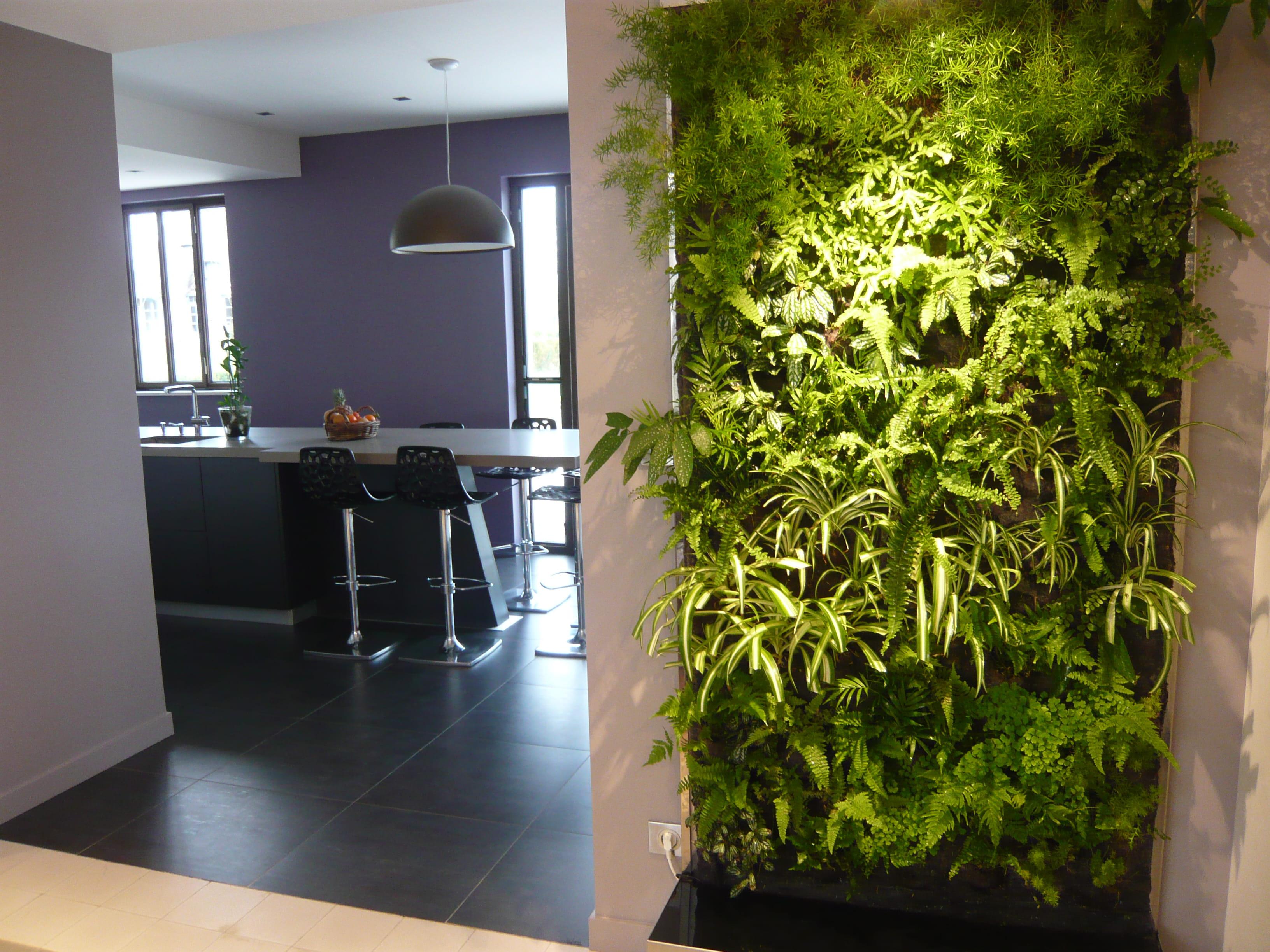 Peut on installer un mur v g tal partout - Mur vegetal d interieur ...