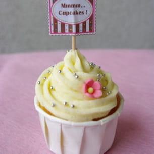 pure vanilla cupcakes