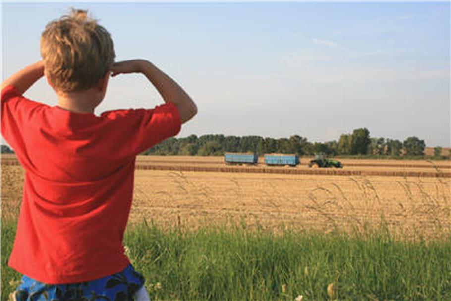 Pesticides : mais que font-ils dans les cheveux de nos enfants ?