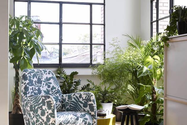 Un fauteuil à imprimé jungle