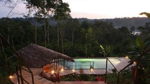 Hamadryade Lodge, Equateur
