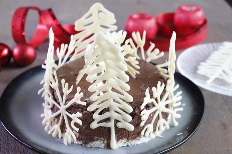 Gâteau glacé chocolat Noir Absolu, pralin coco
