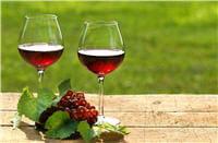 l'alcool participerait à la longévité.