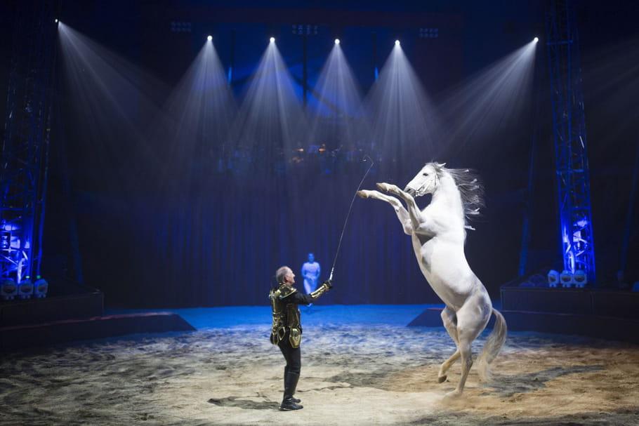 Quintessence, un spectacle de cirque au profit des enfants cardiaques