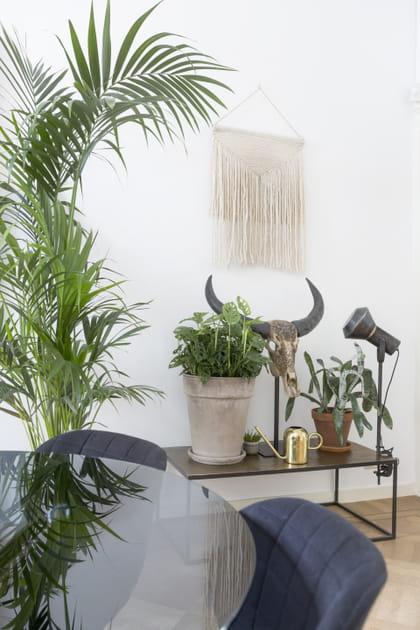 Des objets de décoration contrastés