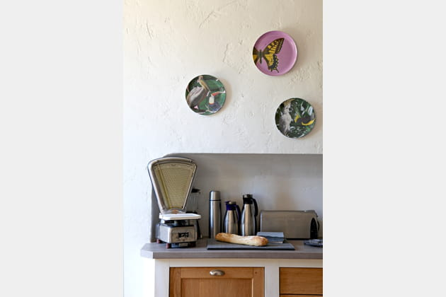 Des assiettes décoratives