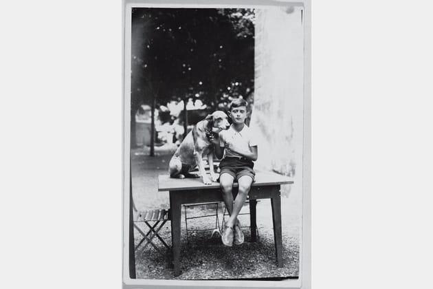 A table, nom d'un chien