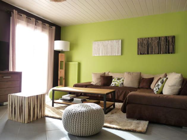 Un mur vert anis for Deco salon vert anis