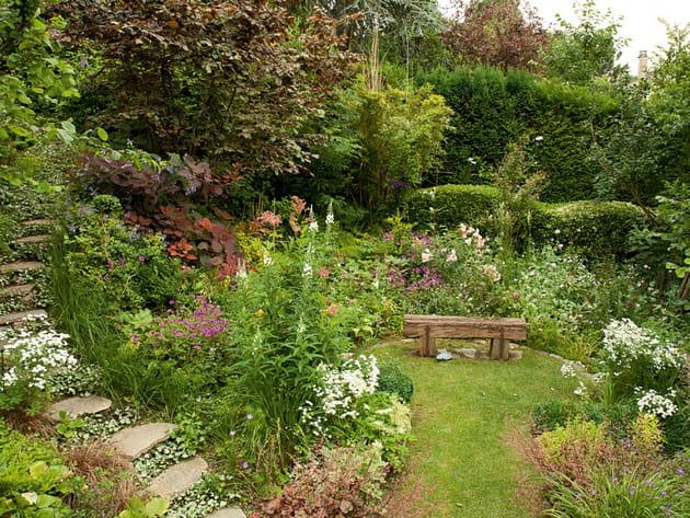 Un jardin en pente plein de vie