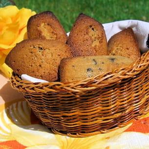 madeleines à la vanille aux pépites de chocolat