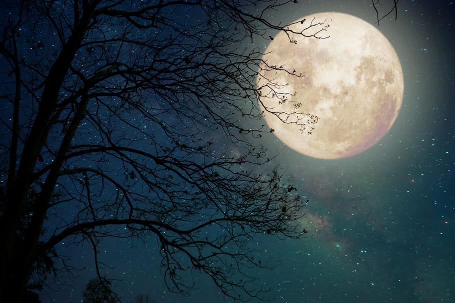 Signe lunaire: de quoi s'agit-il et comment le calculer?