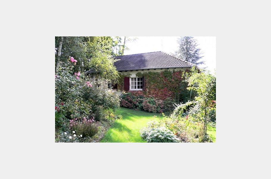 mon jardin en automne jardins de lecteurs journal des. Black Bedroom Furniture Sets. Home Design Ideas