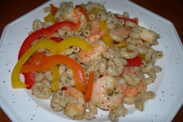 Salade de macaronis-crevettes épicées