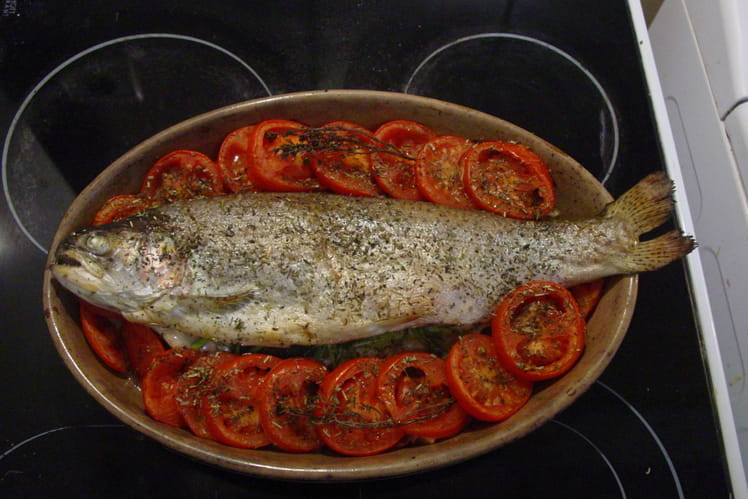 Truite de mer aux tomates