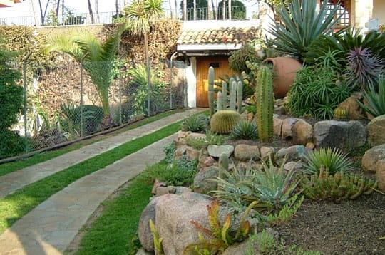 Allée des cactus