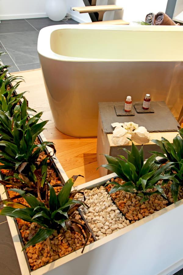 salle-de-bains-ouverte-cloison-plantes