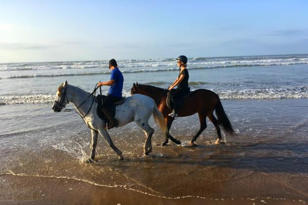 Échappée belle à cheval
