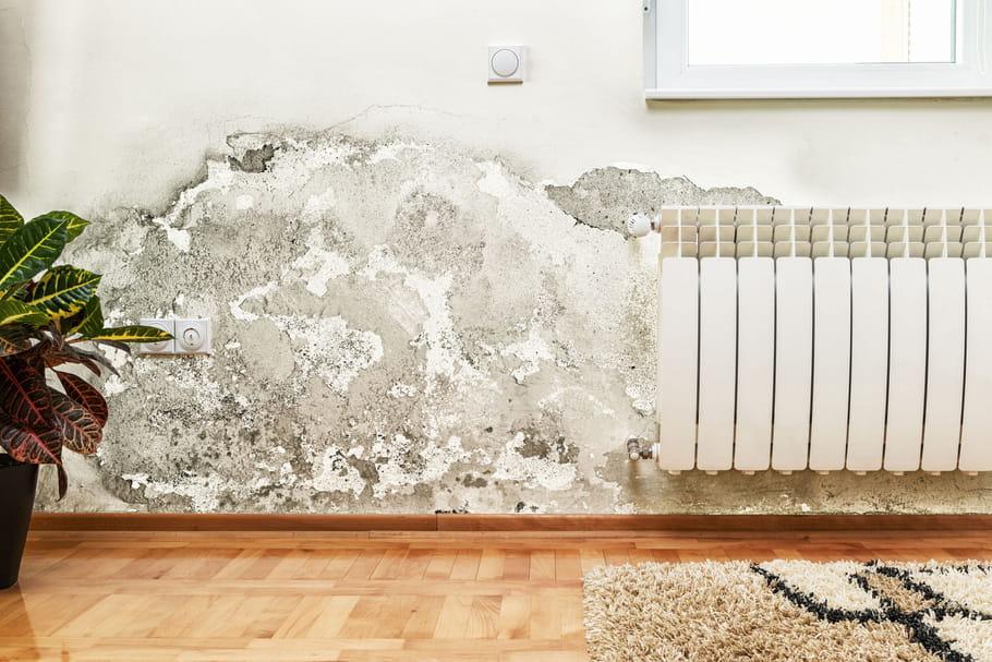 traiter les probl mes d 39 humidit dans la maison. Black Bedroom Furniture Sets. Home Design Ideas