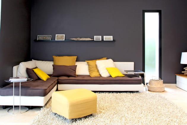 Salon jaune et noir