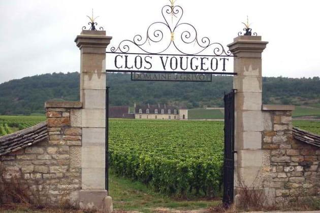 Visite du château du Clos de Vougeot