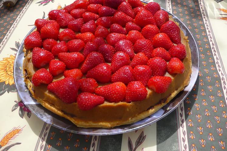 Gâteau express spéculoos et fraises