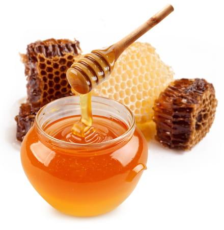 miel bienfaits du miel pour la sant sant m decine. Black Bedroom Furniture Sets. Home Design Ideas