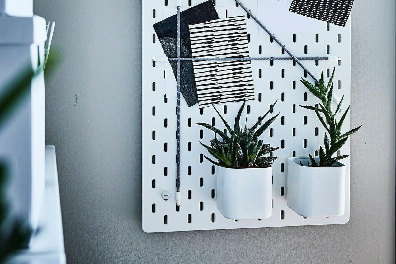 En vidéo, comment faire un mur végétal pas cher?