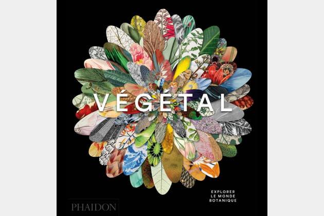 Végétal- Explorer le monde botanique chez Phaidon