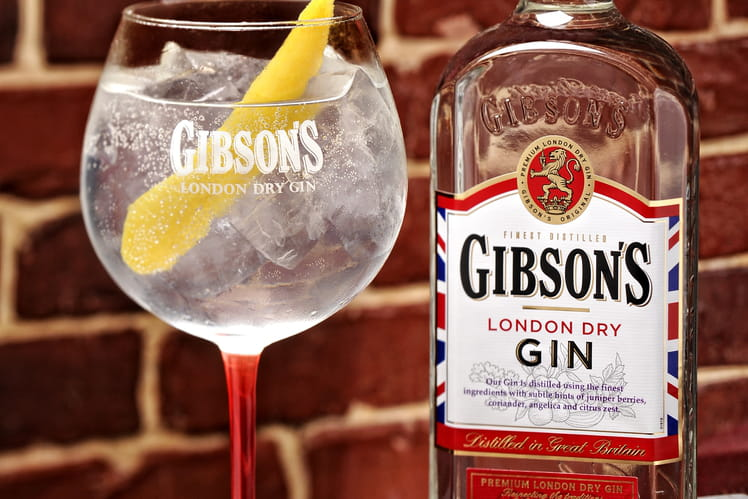 Le Gin Tonic