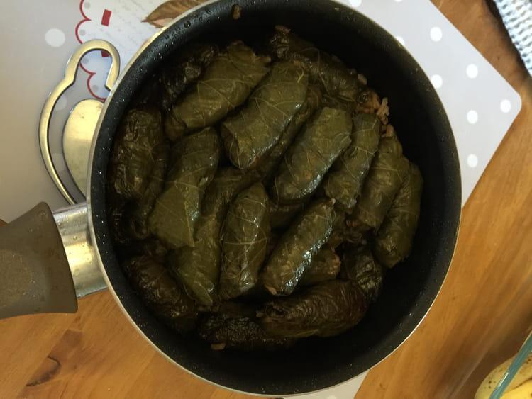 Recette de feuilles de vignes farcies la recette facile - Cuisiner pour une personne ...