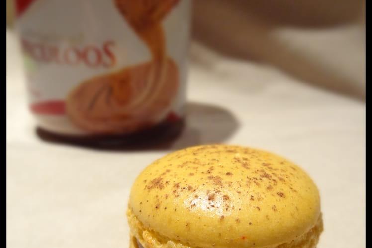 Macaron Spéculoos