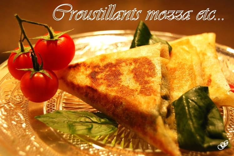 Samoussas à la mozzarella, jambon cru et tomates séchées